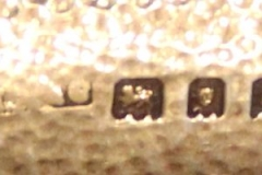 1534-f1