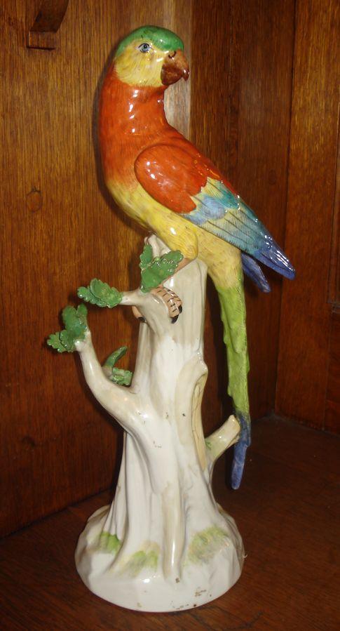 Попугай на дереве
