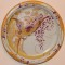 Тарелка декоративная «Попугай на ветке»